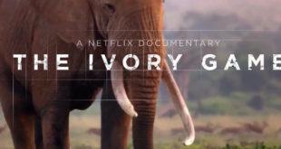 Netflix – Caccia all'avorio: Il trailer e la locandina